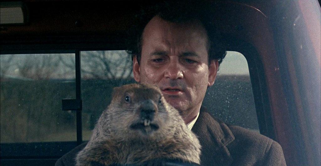 Groundhog Day, v česku známý jako Na Hromnice o den více, byl jeden z nejlepších filmů tehdejší doby.